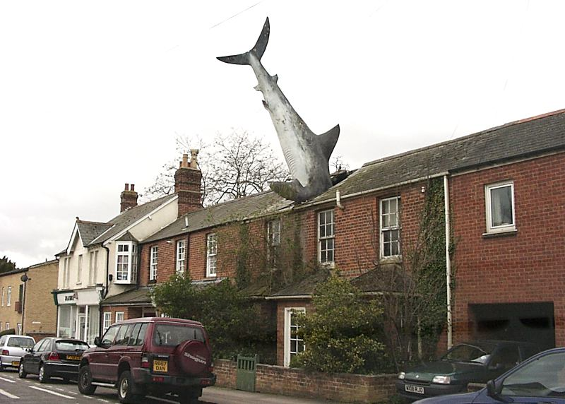 building with shark in roof on CS Lewis Tour