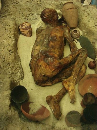 5400 year old mummy called Ginger